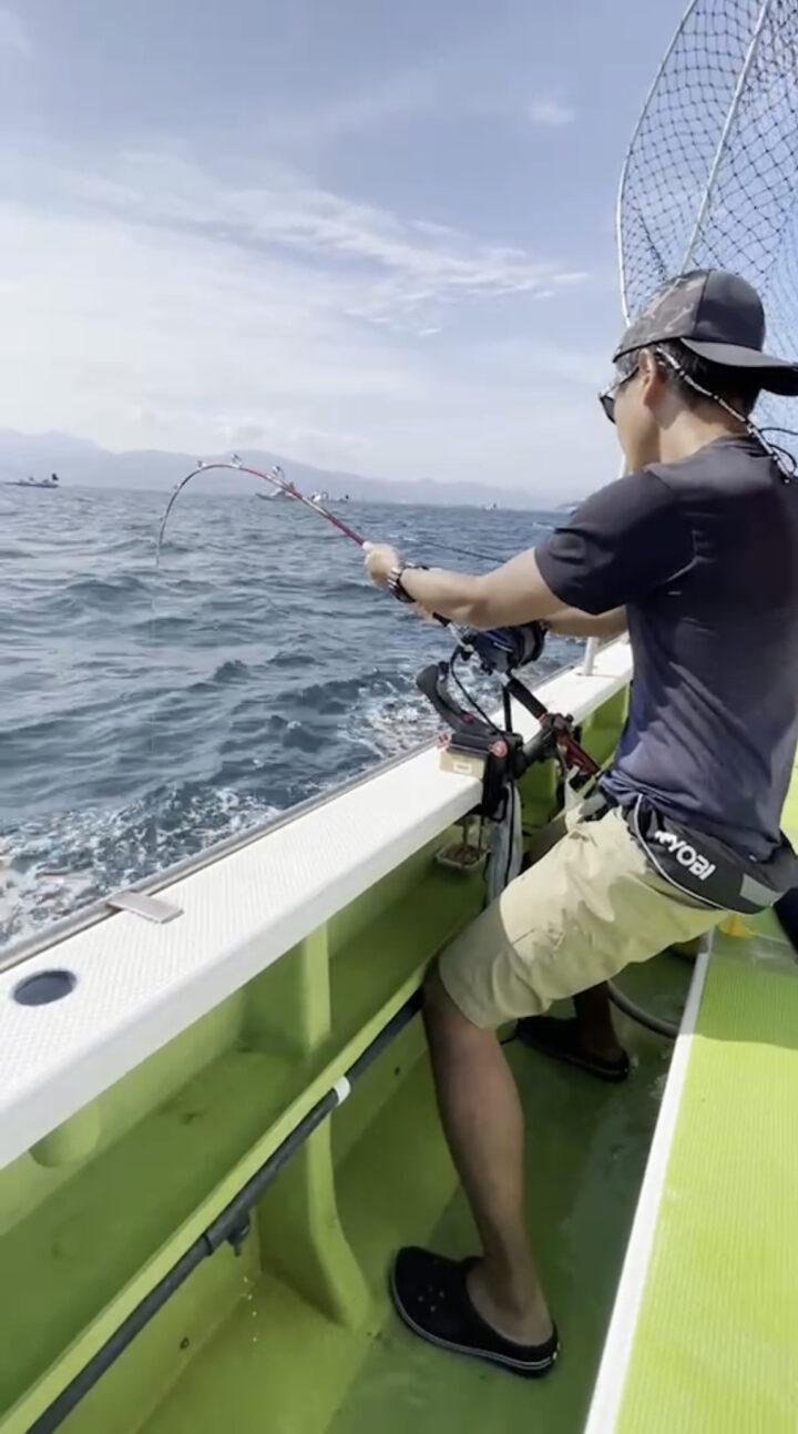 今年もキハダマグロ釣れました!の画像